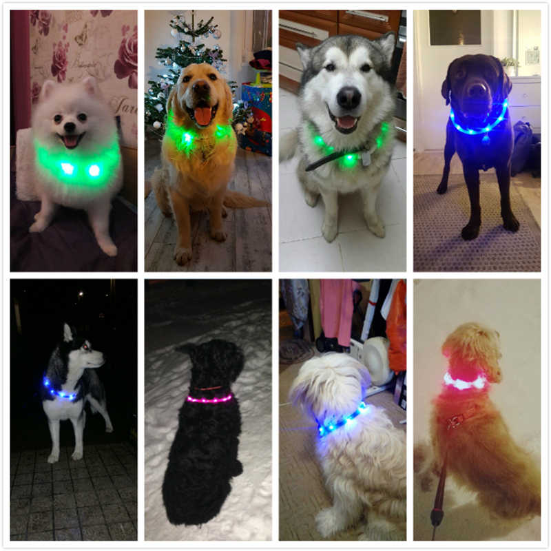 LED USB Silic/ón Collar Luminoso para Perros en Naranja de la Marca PRECORN gatas Recargable v/ía USB Mascotas Tama/ño S-L se Puede Cortar Individualmente a 18-65 cm