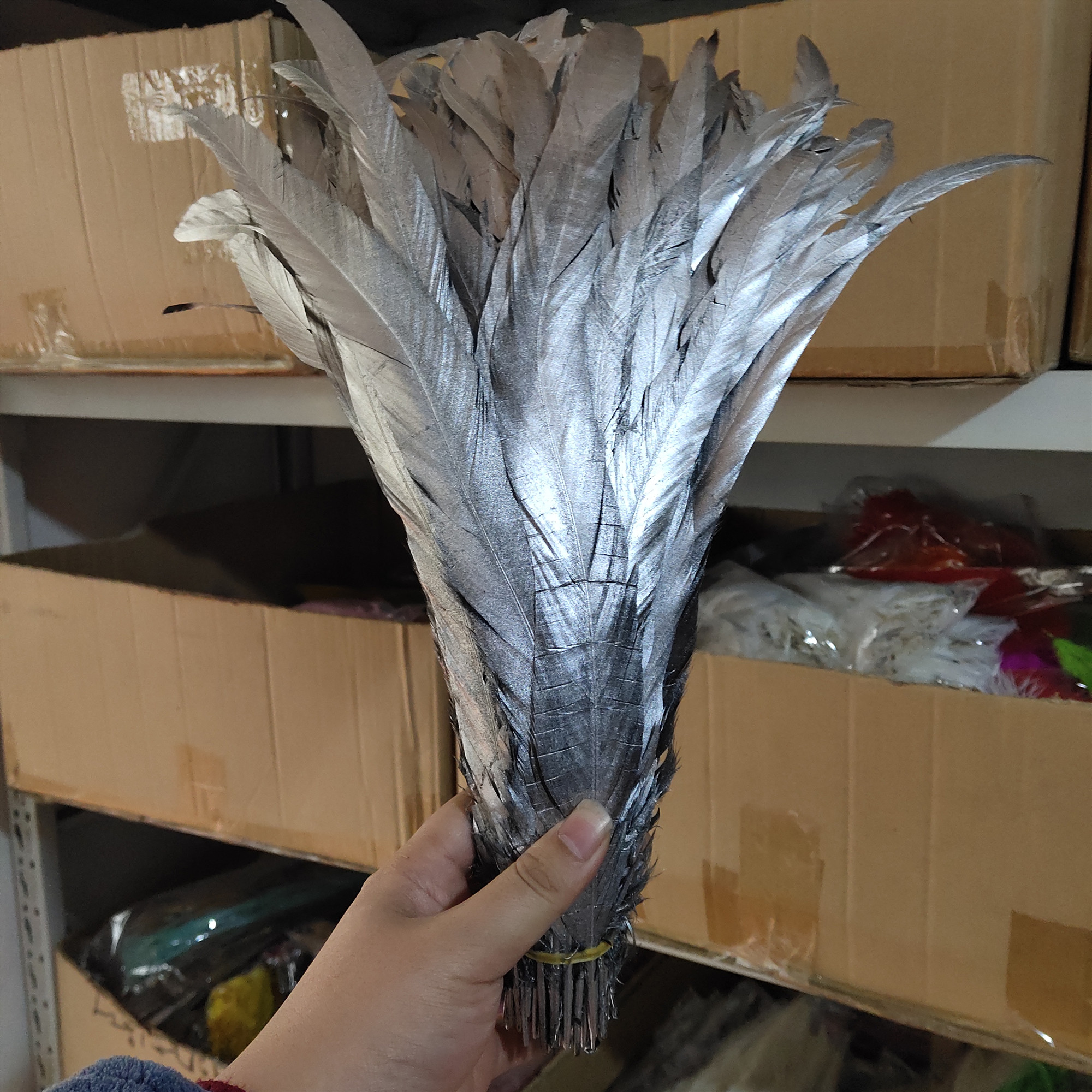Wholesale Beautiful 100pcs Single Silver Natural Rooster tail feather 10-12inches25-30cm For Decorative Accessories