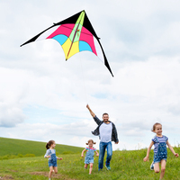 Outdoor Sport Delta Kite Single Line Flying Kite with 30m Flying Line for Family and Friends