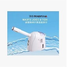 Professional Portable Mini Desktop Facial Steamer Ozone Spa