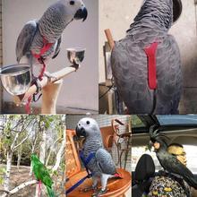 Поводок для птиц-попугаев, противоукусов, летающий тренировочный канат, попугай, птица, наборы поводков для домашних животных, Сверхлегкий поводок, мягкий, портативный, для домашних животных, игрушка