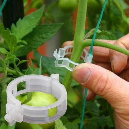 50pcs 23mm Plastic Plant Support Clips For Tomato Hanging Trellis Vine Connects Plants Greenhouse Vegetables Garden Ornament