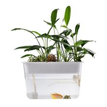 Fish Vegetables Symbiotic Lazy Ecological Water-Free Desktop Fish Tank Fighting-fish Turtle Transparent Fish Tank Grows Plants