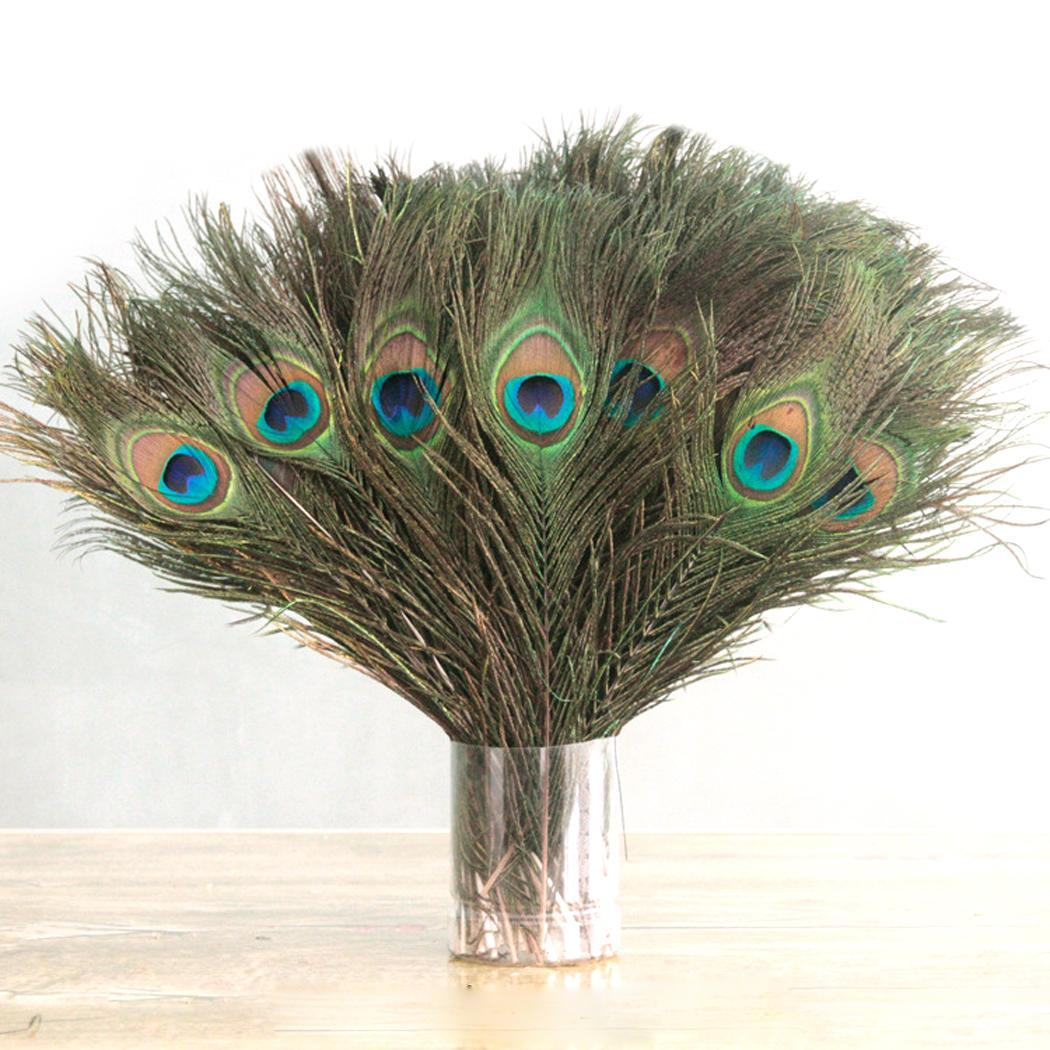 Peacock As Home Decoration Feathers Natural Tail Decoration Picture Party