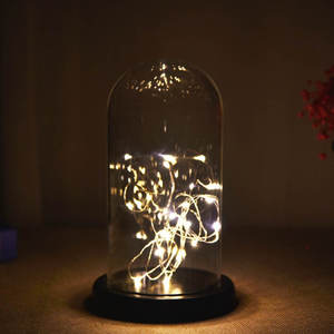Glass-Cover Rose-Flower Gifts Transparent Black-Bottomed Wholesale Lantern Preservation