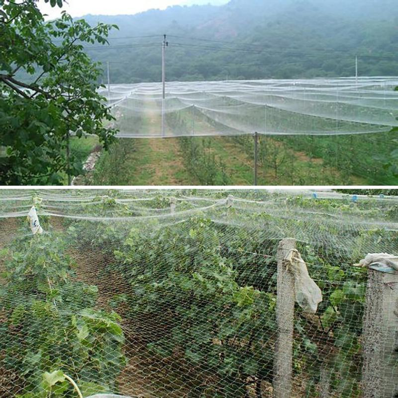 1.5cm Hole Mesh Multiple Sizes Plastic Anti Bird Pest Net Pond Net Garden Fruit Tree Vegetables Orchard Protection Net