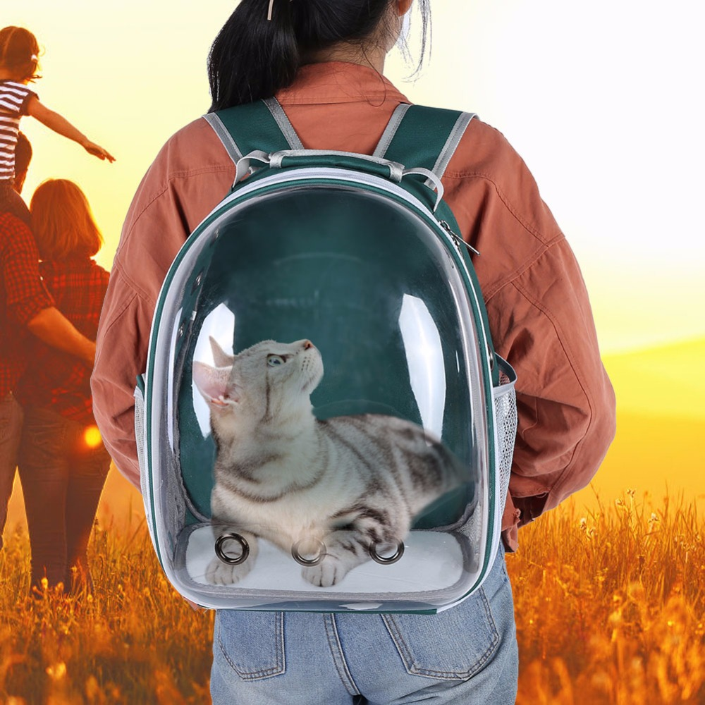 Pet Carrier On Sale Clear And Breathable Dog Backpack