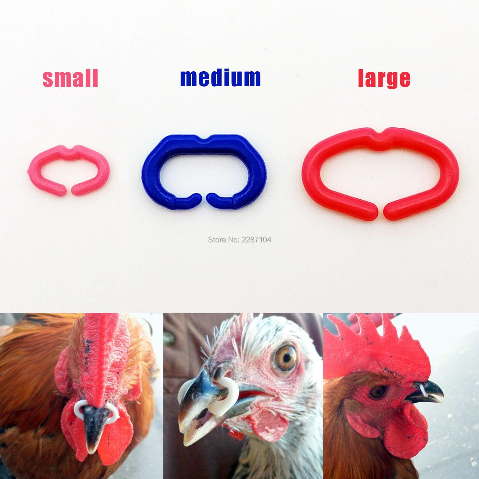 50 pçs s m l tamanho bico de galinha fecho galo fasan boca snap anel substituir peepers óculos de olho blinders óculos anti-bicking alimentação
