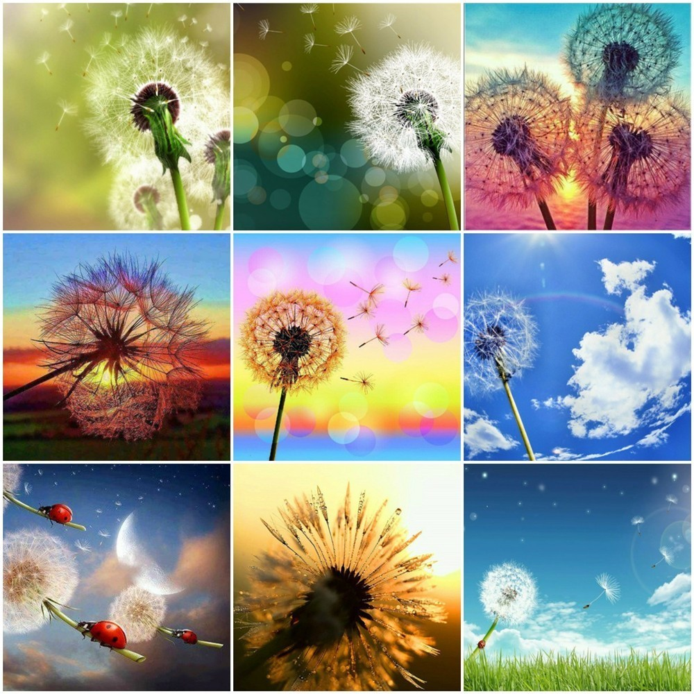 HUACAN Full Square 5D DIY Diamond Embroidery Display Dandelion Picture Of Rhinestone Diamond Painting Mosaic Home Decor Gift HUACAN Full Square 5D DIY Diamond Embroidery Display Dandelion Picture Of Rhinestone Diamond Painting Mosaic Home Decor Gift
