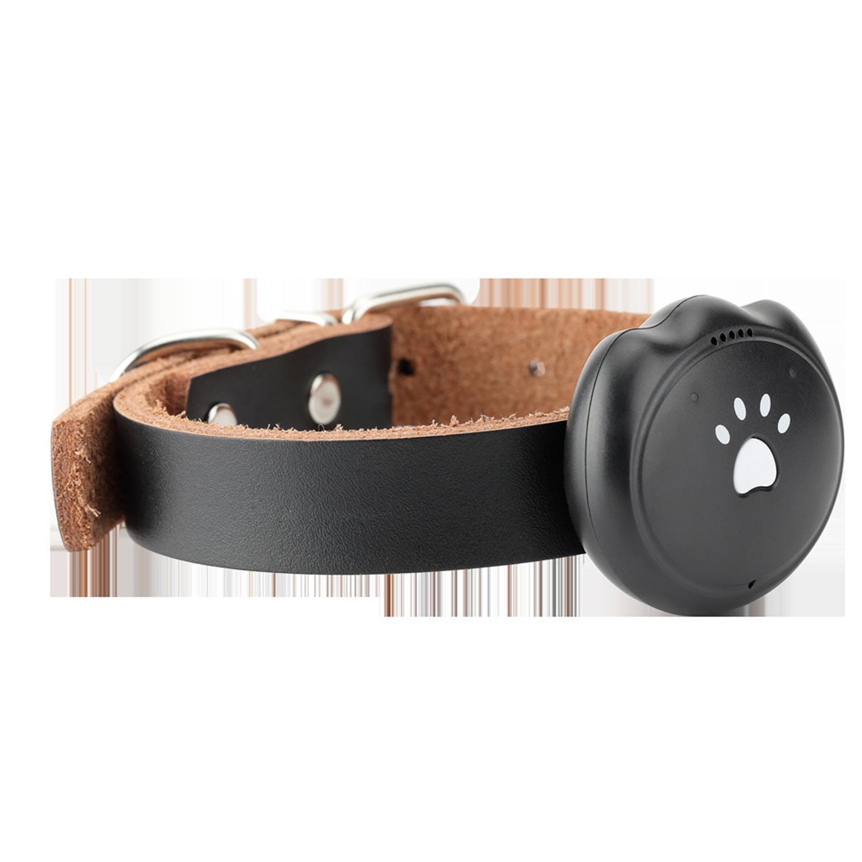 Chien chat Pet Mini GPS collier mode Durable Tracker collier intelligent 132 heures longue veille suivi