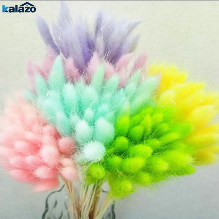 Artificial & Dried Flowers Festive & Party Supplies 50pcs Bunch Dried Flowers Natural Rabbit Tail Fake Grass Dried Flower Artificial Plants Flowers Home Decoration Photography Prop