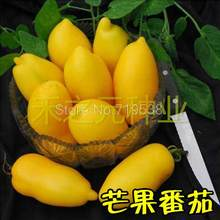 Mango fruit bonsais ingemaakte tomaat bonsais tomaat fruit smaak super goede 100 stks(China)