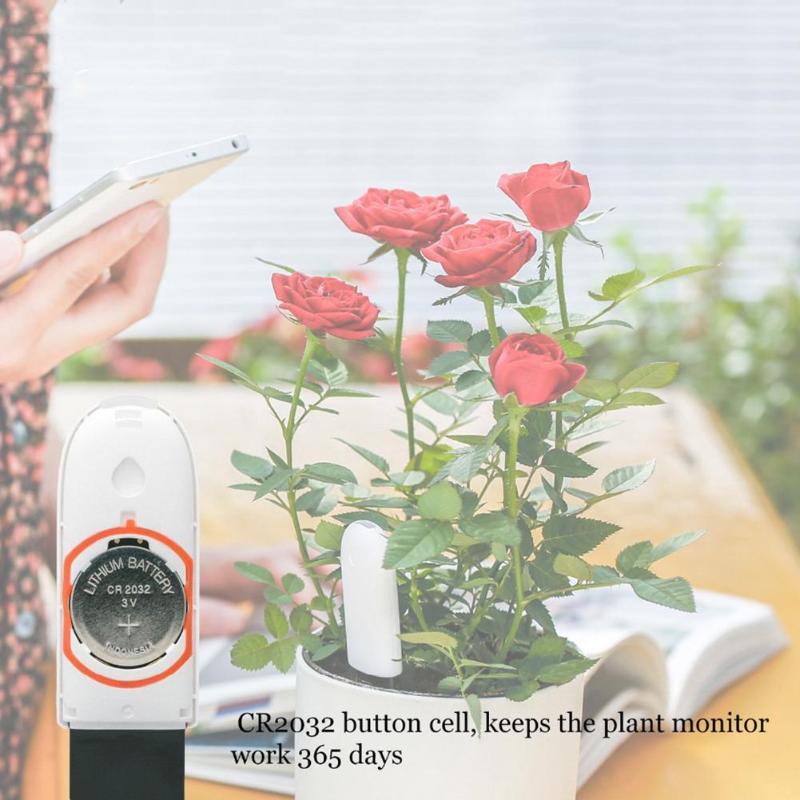 Xiaomi Mi Flora Monitor Digital Garden Plants Grass Flower Care Soil Water  Light Smart Tester Sensor International Version