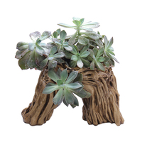 Simulation Tree Root Succulent Plant Pot Garden Planting Pots Outdoor Botanic Beautiful Garden Flower Pot DIY