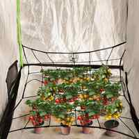 Flexible Net Trellis Elastic Trellis Netting With 4 Steel Hooks For Grow Tents Garden For Plant Cultivation In Plant Tents