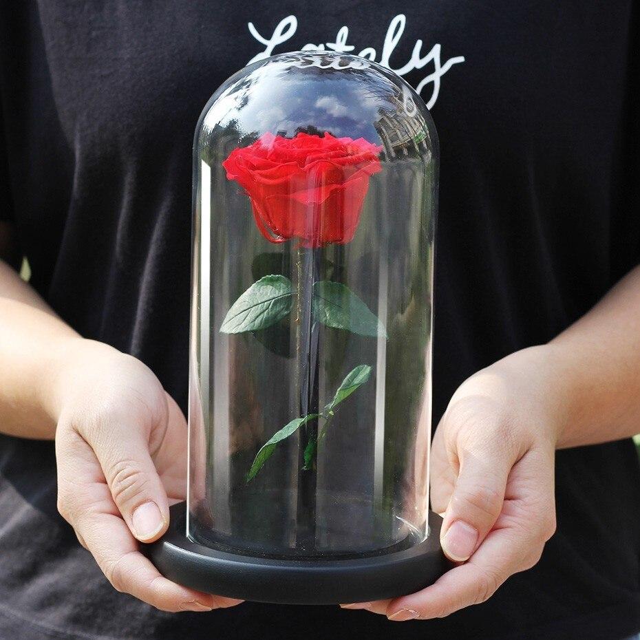 Flor de la vida eterna roja, Rosa inmortal, La Bella y la bestia, Rosa en cúpula de cristal, regalo para el día de la madre, regalo para el Día de San Valentín