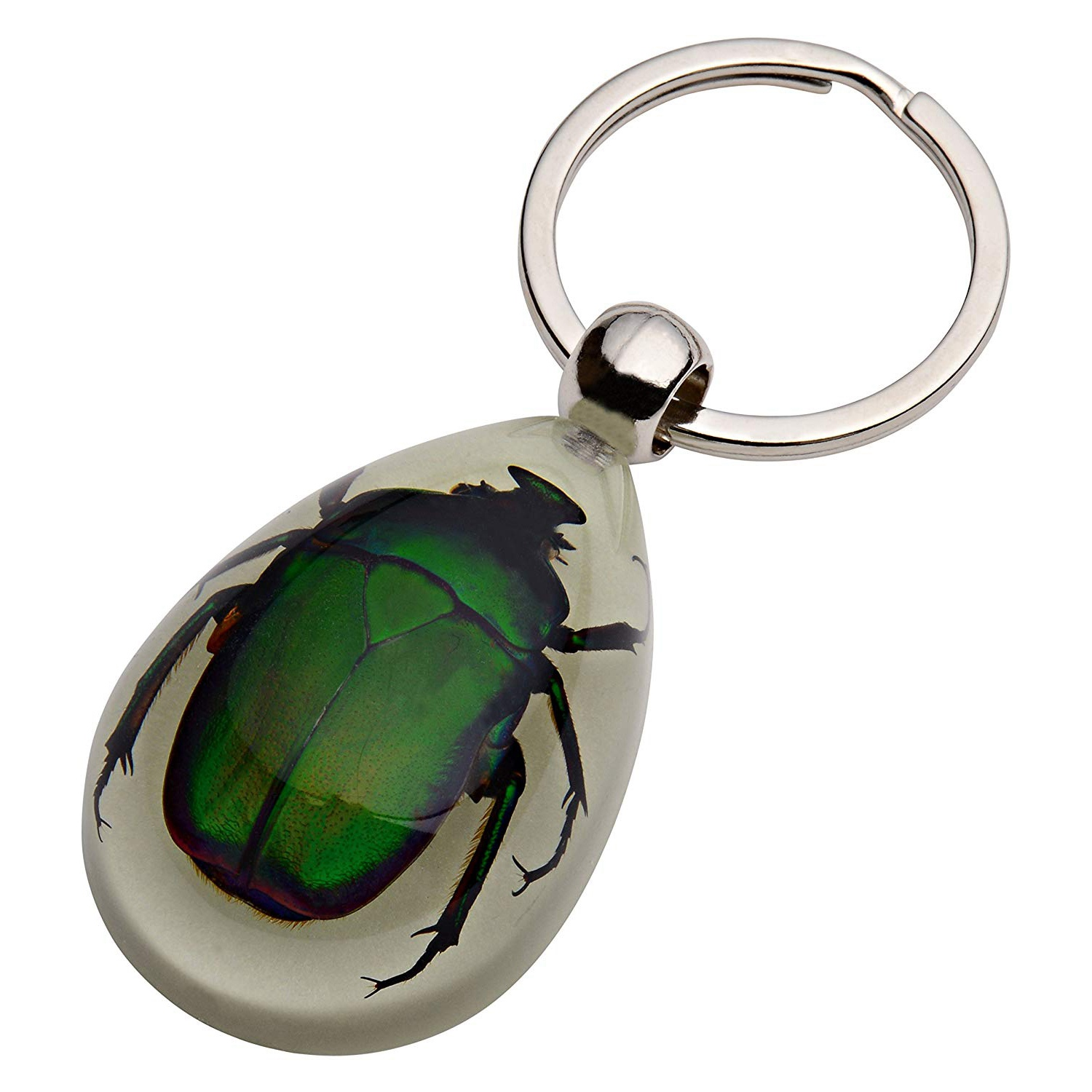 10 KEYCHAIN BEE COOL GLOW LUCITE INSECT JEWELRY TAXIDERMY GIFT