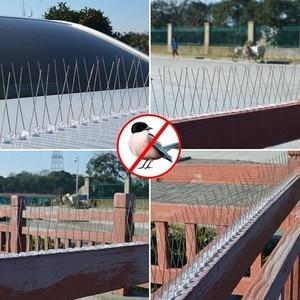 Image 5 - Sıcak 1 15 ADET Haşere Kontrolü Plastik Kuş ve Güvercin Sivri Anti kuş Anti Güvercin Spike Kurtulmak iyi Güvercinler ve Korkutmak Kuşlar
