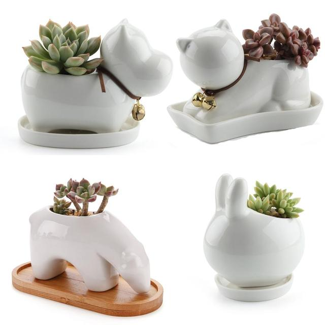 T4U Animal Ceramic Succulent Planter Plant Cactus