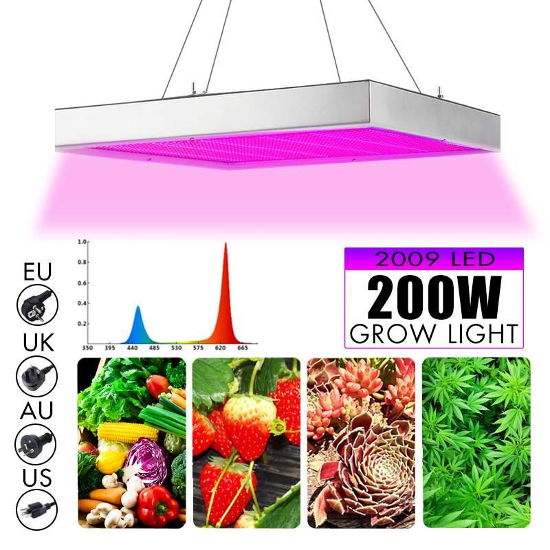 Smuxi 200 W Lampe De Croissance led Élèvent La Lumière AC85-265V Usine à Spectre Complet Éclairage Fitolampy Pour Plantes Fleurs La Culture Des Semis