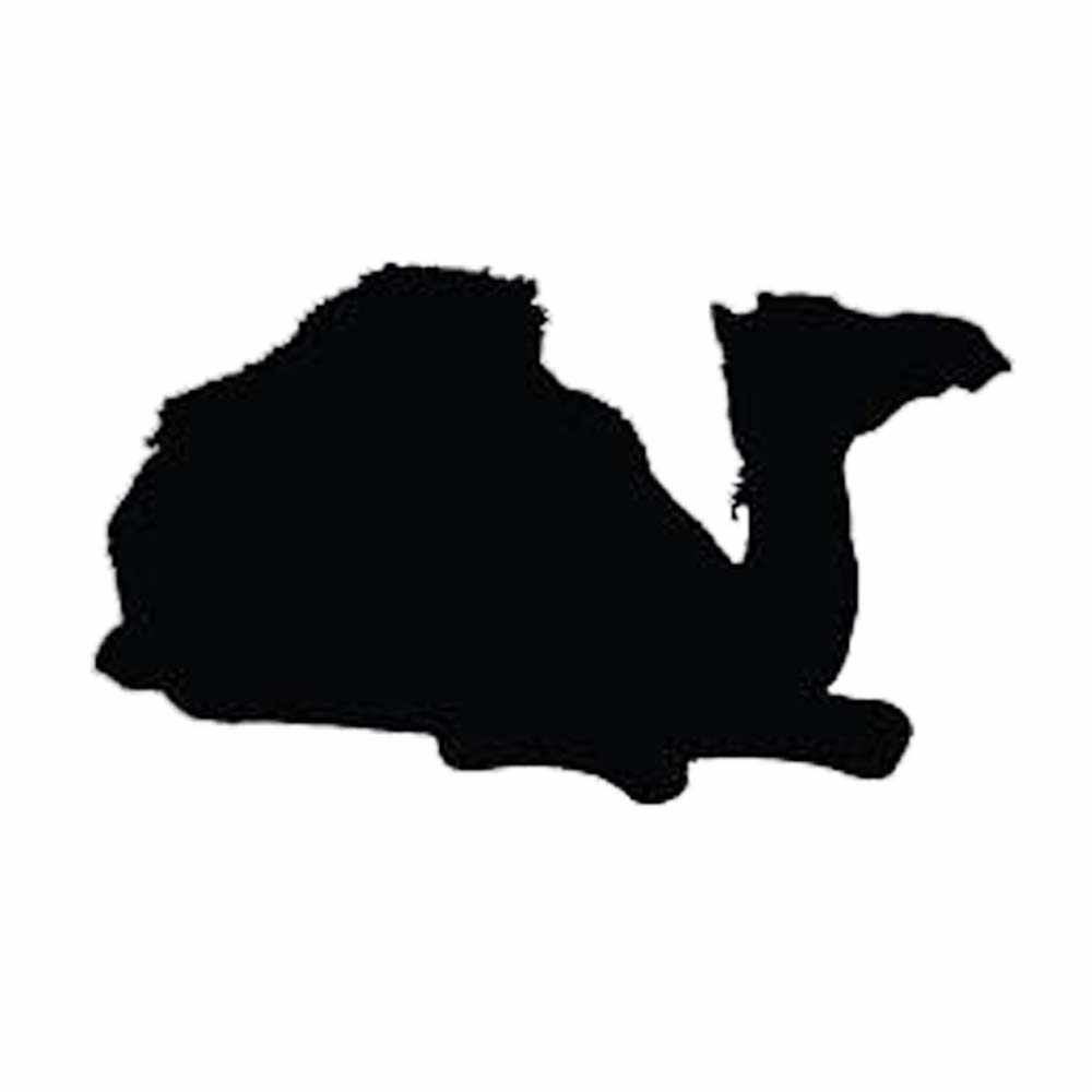 """Camel Kids Cartoon Car Bumper Sticker Decal /""""SIZES/"""""""