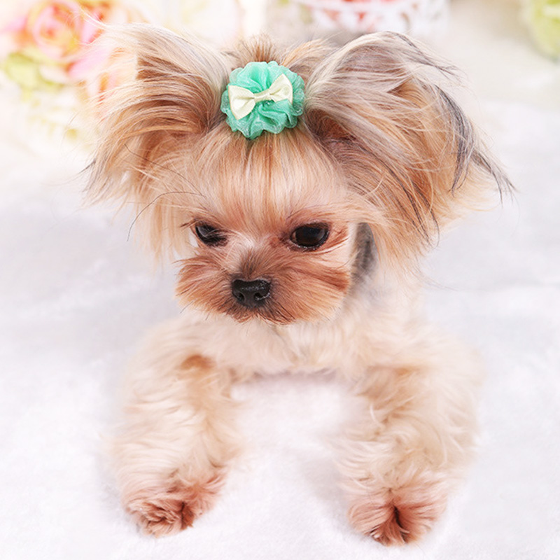 Pet Products 1 Piece Bubble Hairpin Vip Organza Dog Teddy Cute Pet Grooming Glove