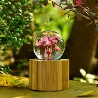 AUGKUN Daisy Crystal Ball Music Box Home Decorating Crafts Woodn Music Box City of Sky for Valentine's Day Birthday Gift
