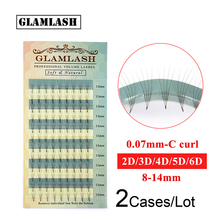 GLAMLASH Wholesale 2 Cases 2d/3d/4d/5d/6d Pre Made Volume fans Faux Mink Premade Russian Lash Eyelash Extension Supplies