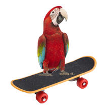 1Pc Parrot Skateboard Perch Stand Bird Funny Training Playing Interaction Toy(China)