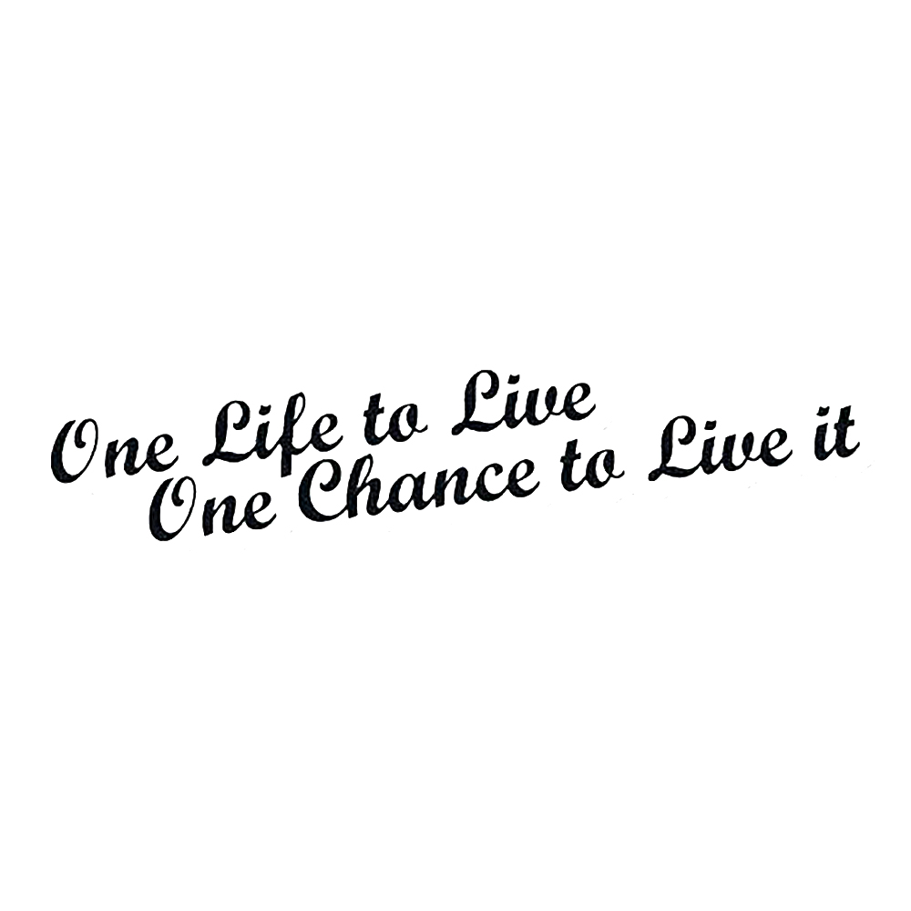 20*4cm One Life To Live Chance It Car Stickers Funny Prank Laptop Motorcycle SUVs Bumper Vinyl Decals
