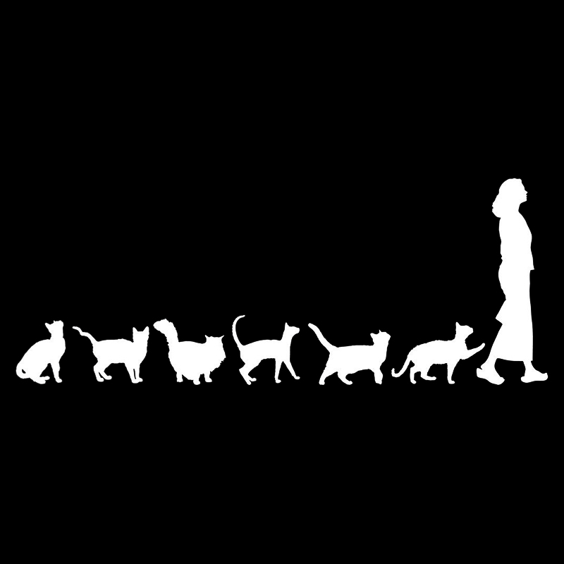 Image 3 - 20*7.8cm Cats Crazy Cat Lady Woman Cute Funny Car Window Decal Bumper Sticker Pet Pets Vinyl Car Wrap Decor Decals-in Car Stickers from Automobiles & Motorcycles