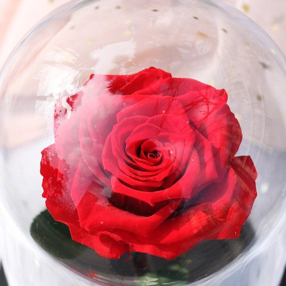Красный цветок вечной жизни, бесморская Роза, Красавица и чудовище, Роза в стеклянном куполе, подарок на день матери, подарок на день Святого Валентина