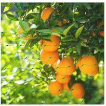 4x12 м сад для укрывания растений Orchard фрукты овощи защиты Drawstring заборный сетчатый анти птиц садовая сеть сетки Размеры 1,5 см