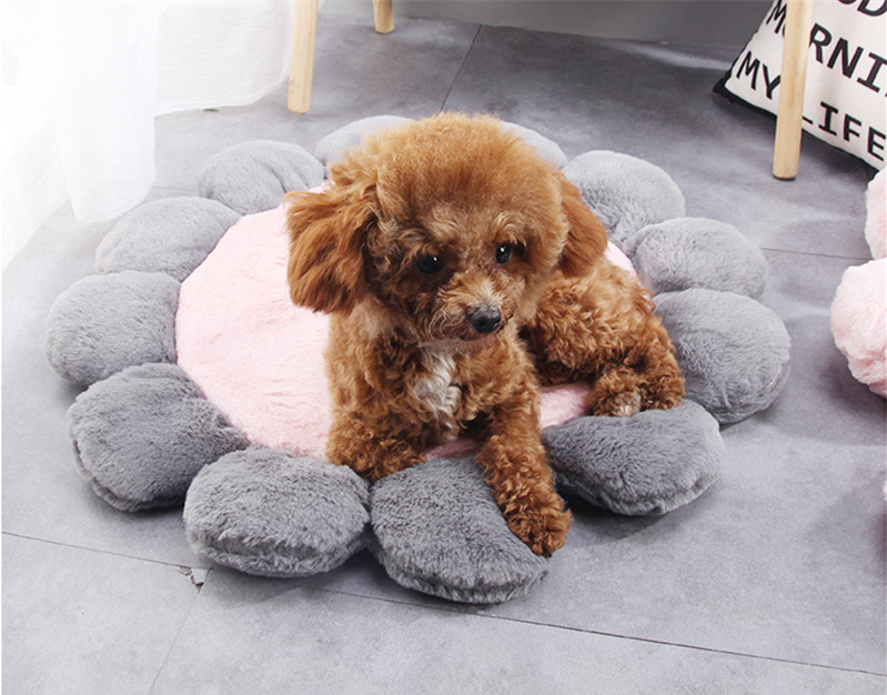 1Pcs Pet Dog Mat Four Seasons General Teddy Puppy Kennel Cat Litter Cute Flower Shaped Sleeping Mats Winter Warm Dog Sofa House in Houses Kennels Pens from Home Garden