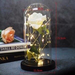 Image 5 - Bellezza artificiale e bestia fiore rosa In vetro cupola cintura lampada a LED decorazioni per la casa di natale per san valentino regalo di capodanno