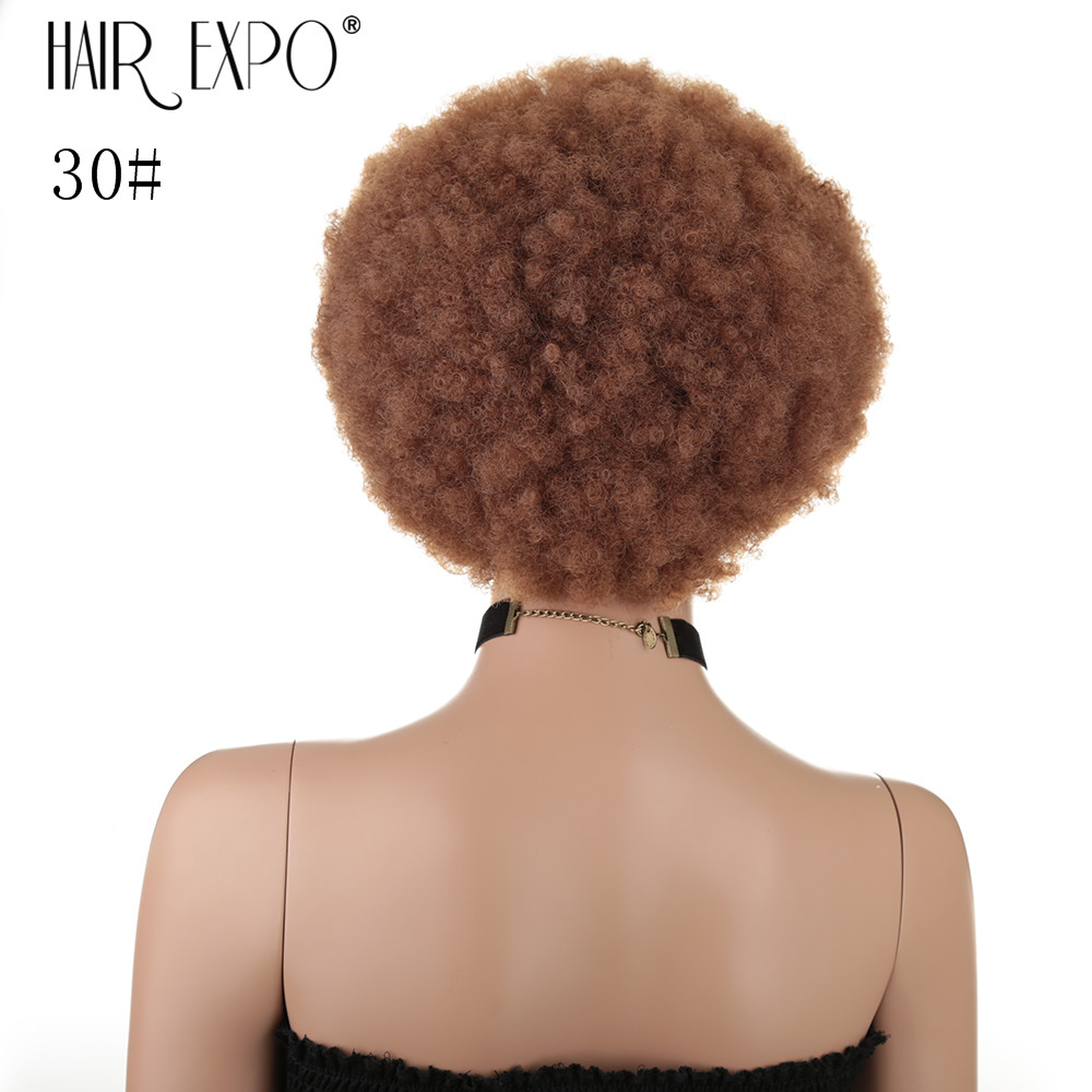 10inch Short Hair Afro Kinky Curly Wig For Black Women Heat Resistant Fluffy Synthetic Ombre Cosplay Wigs Hair Expo City