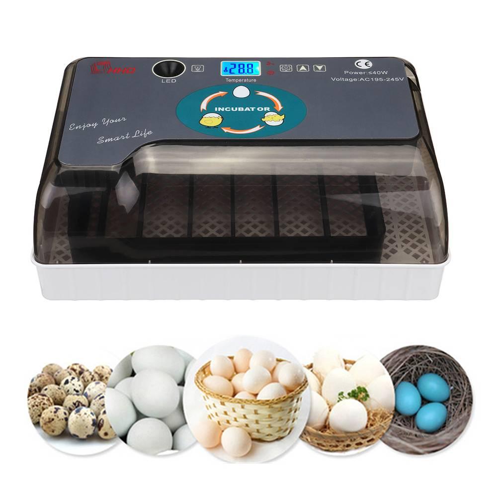 Geral 12 Mini Ovos Nascedouro Incubadora de Ovos Automático LED Digital Máquina De Viragem Para Frango Pato Bird Ovos de Ganso