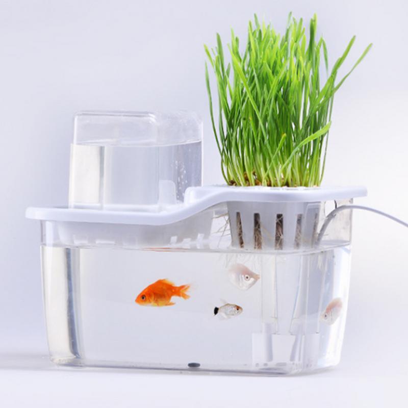 Mini Aquarium Aquarium Mini Aquarium poissons légumes symbiotique bureau et décoration de la maison - 2