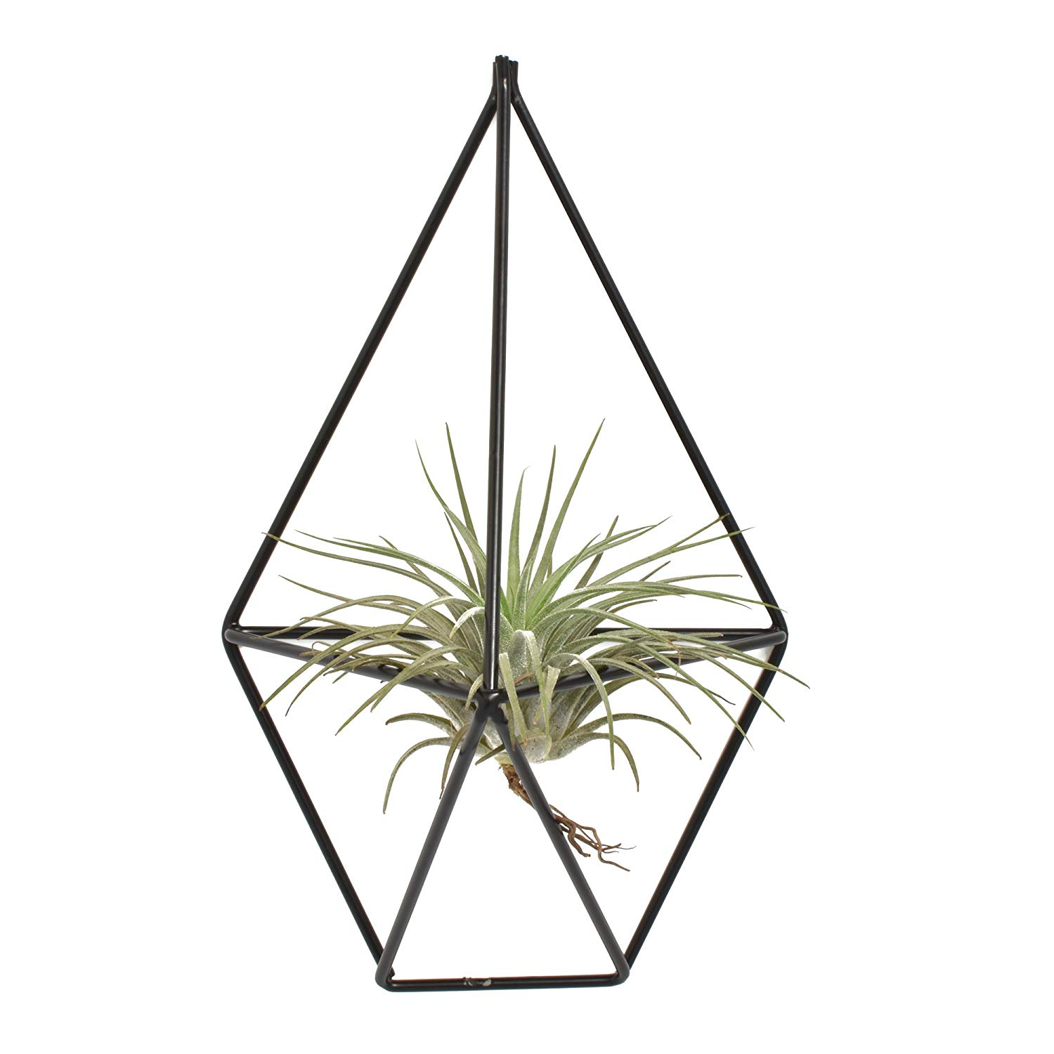 Flower & Plant Pots, Baskets & Window Boxes Wall Mounted Plants Holder Irregular Geometric Metal Hanging Rack Ornament