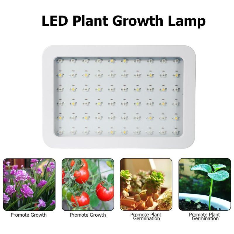 600 W LED à spectre complet plante poussent des légumes de jardin légers croissant la lampe