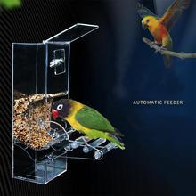 Акриловая автоматическая кормушка для птиц устройство для кормления домашних животных семена контейнер для еды аксессуары для птичьей клетки для длиннохвостый попугай канари