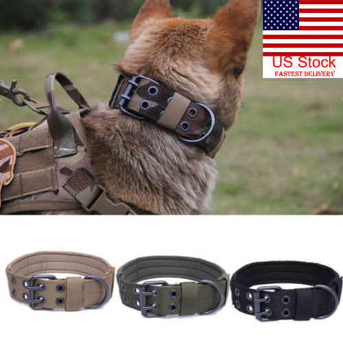 Military Style Collar