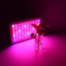 1000W Full Spectrum LED Grow Light for Plants Fruit Plant Led Bulb EU Plug Hot Sale