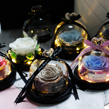 Dried Flower Rose In Flask The Beauty And Beast LED Light In Glass Dome For Mother's Day Valentine's Day Gifts Wedding Party