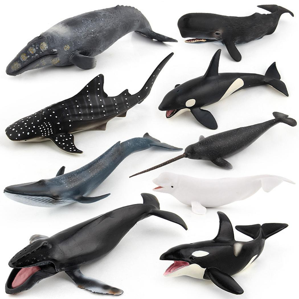 Toy Animal-Model Whales Marine Wild-Ocean Educational of Kids Simulated Variety Children
