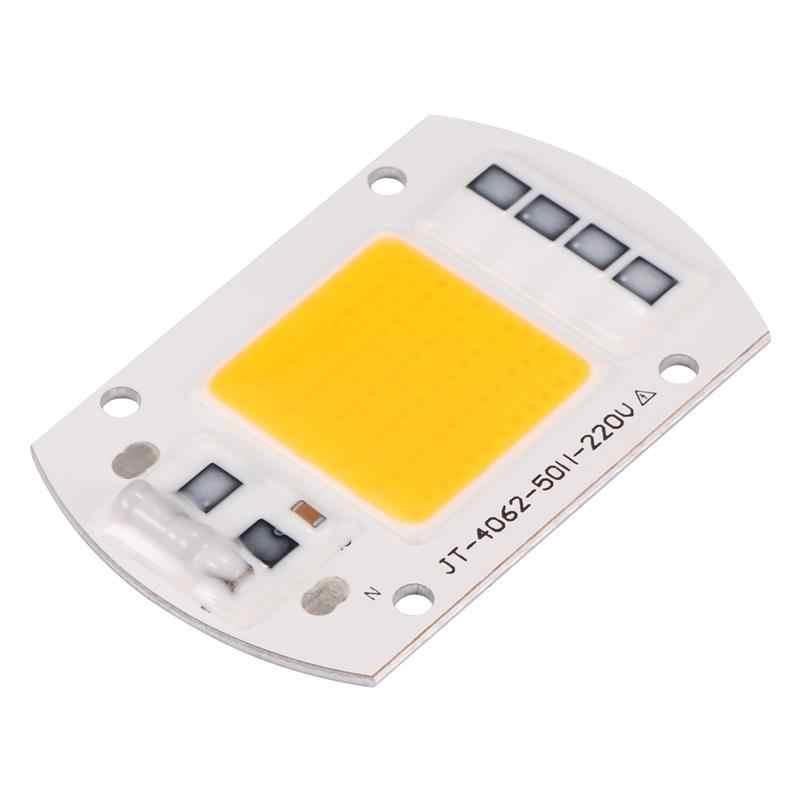 20W 30W 50W 100W LED COB Bulb Lamp 110/220V Smart IC Driver Cold Warm White LED Spotlight COB LED Lamp Chip Floodlight Chip