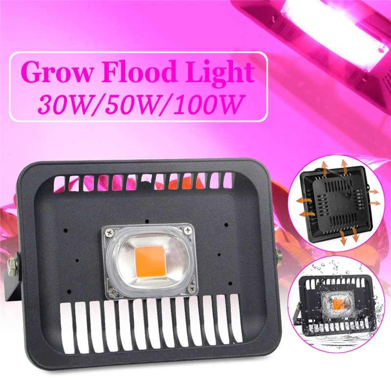 Led Flood Light Spectrum: New 30W/50W/100W COB LED Grow Flood Light Full Spectrum