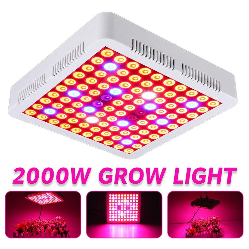 2000W LED Grow Light 100leds Red Blue UV IR Full Spectrum Phytolamp Plants Tent Greenhouse Hydroponic Seedling Flower Vegetables