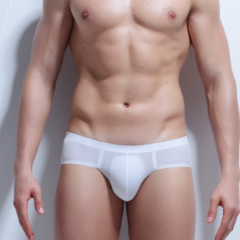 3 Pcs Mens Underwear Ice Silk Seamless Gay Thin Summer Underpants  Transparent Male Panties Pouch No Trace Man Briefs Penis Sexy