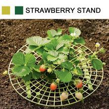 Strawberry Frame Holder Balcony Planting Rack Fruit Support Shelf Plant Flower Climbing Vine Pillar Gardening Stand Round